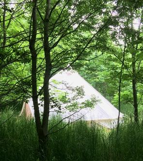 Off-grid luxury glamping holidays in the woods at Woodland Escape Glamping Holidays in Somerset