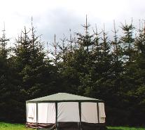Posh camping in Somerset, glamping in Yurts and Bell tents at Woodland Escape Glamping Holidays