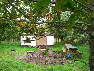 Glamping in a Yurt in Somerset at Woodland Escape